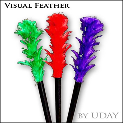 Visual Feather (Small) by Uday - Trick