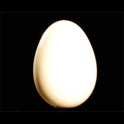 Wooden Egg - Uday