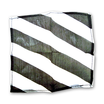 "Zebra Silk 18"" black & white by Uday - Trick"