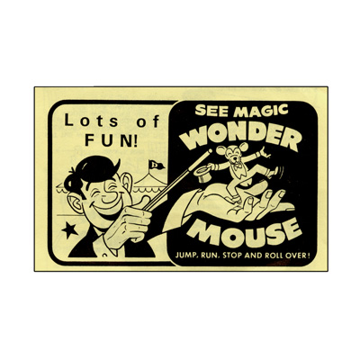Wonder Mouse  by Fun Inc. - Trick