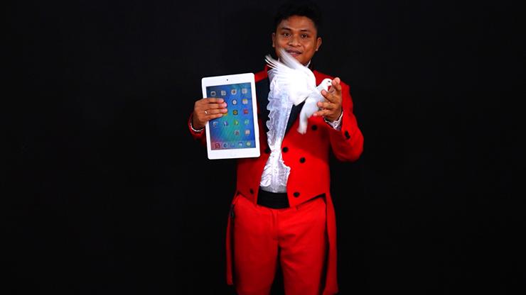 iPad Appearing Dove