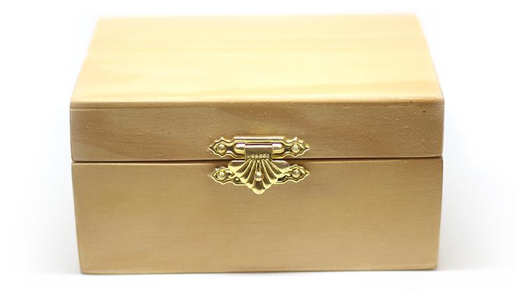 Haunted Box (Standard) by João Miranda - Trick