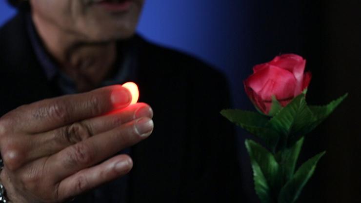 Rocco's Prisma Lites SOUND Pair... MagicWorld Magic Shop