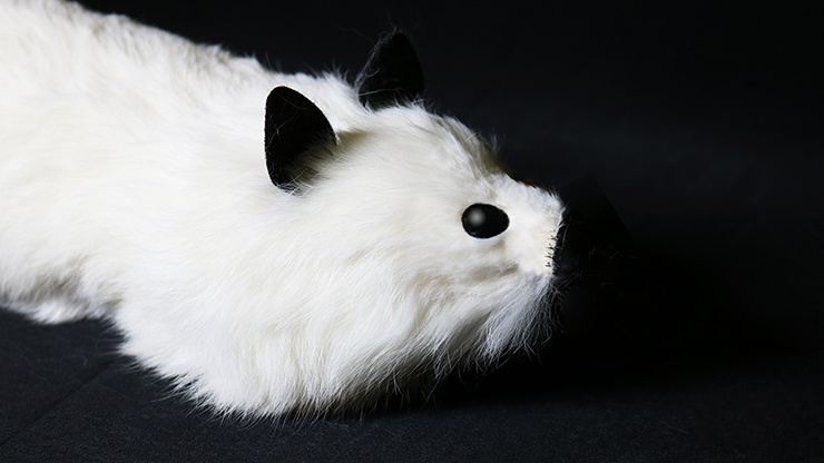 White Fox Spring Animal by Magic... MagicWorld Magic Shop